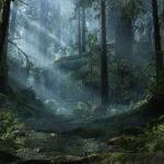 Swamp Crash Site